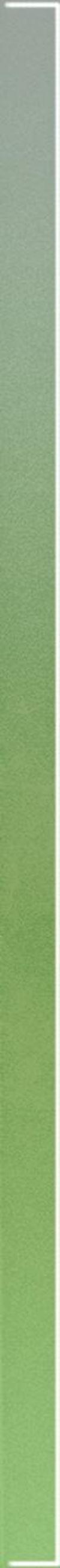 Paradyż Uniwersalna Listwa Szklana Verde