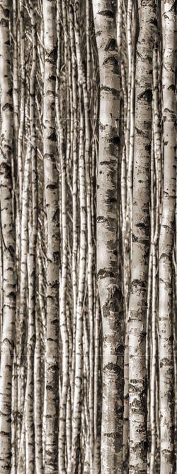Tubądzin Birch