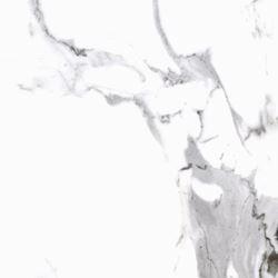 Cerrad Calacatta white Poler 60x60
