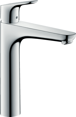Hansgrohe Focus 31518000