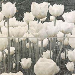 Domino Sabaudia Flower