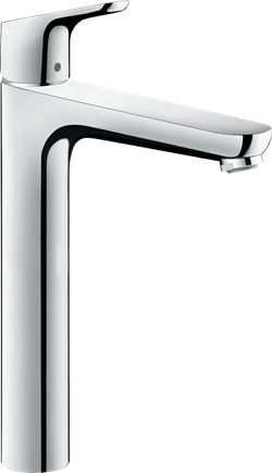 Hansgrohe Focus 31531000
