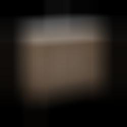 Elita Santos Oak 100 2D-3S Tobak 166388