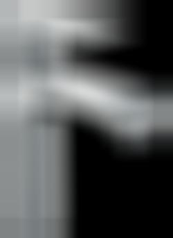 Hansgrohe Metris 31203000