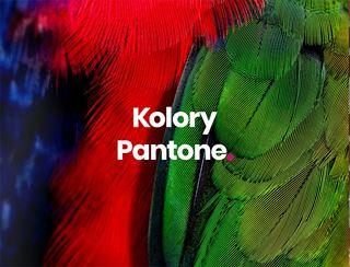Kolory Pantone
