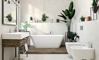 Jakie rośliny wybrać do łazienki?