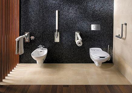 Aranżacja łazienki Koło Lehnen Evolution