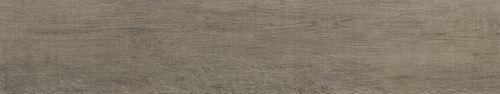 Cerrad Fuerta dust 24664