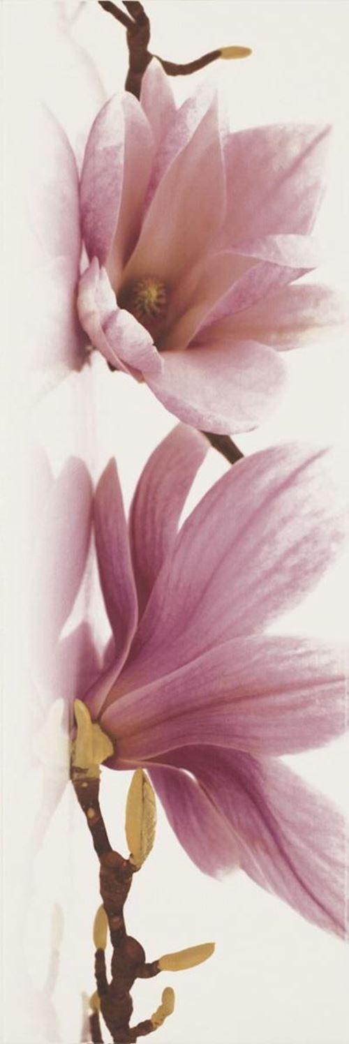 Paradyż Abrila Inserto Kwiat A