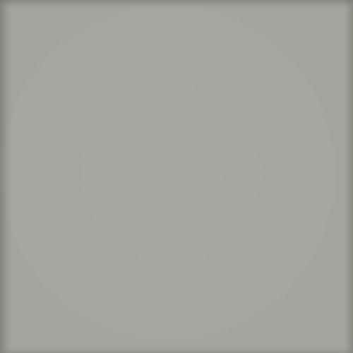 Tubądzin Pastel cementowy MAT (RAL D2/100 60 05)