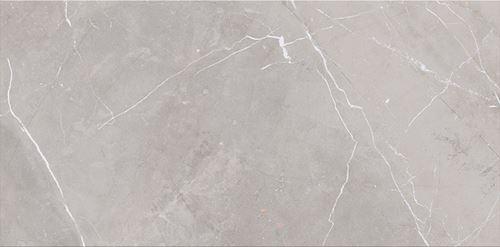 Cersanit Assier Grey Glossy NT919-001-1