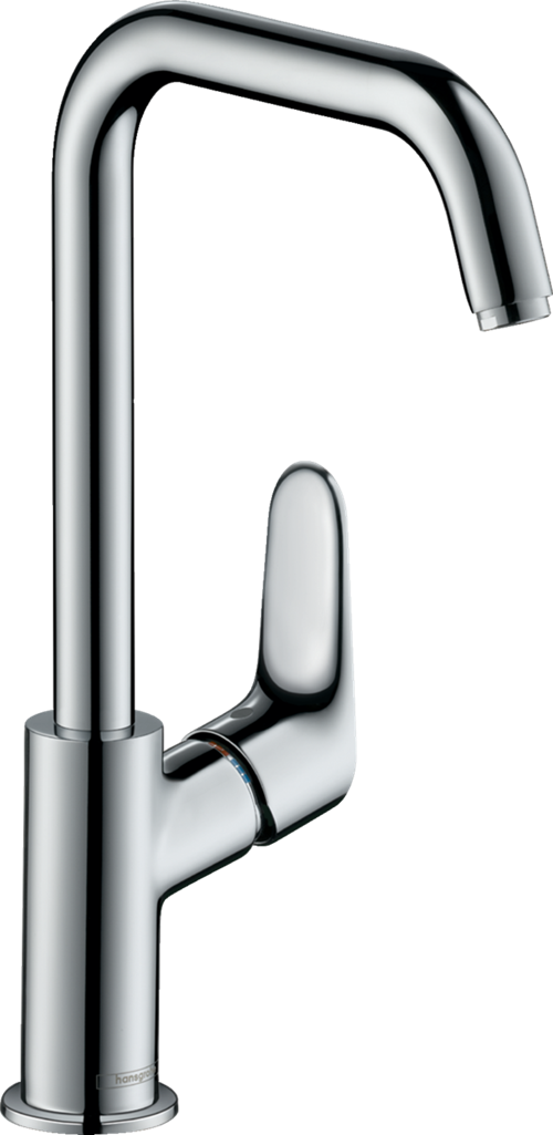 Hansgrohe Focus 31519000