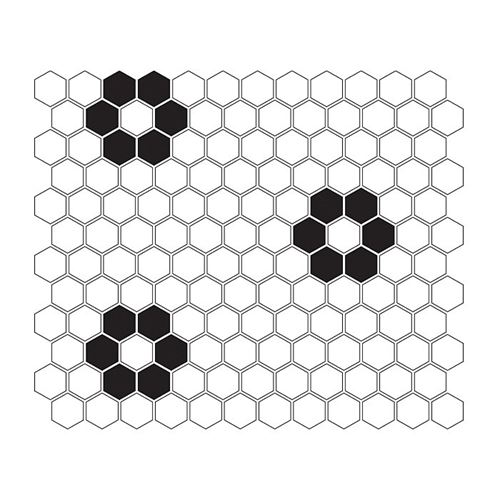 Dunin Hexagonic Mini Hexagon B&W Flower
