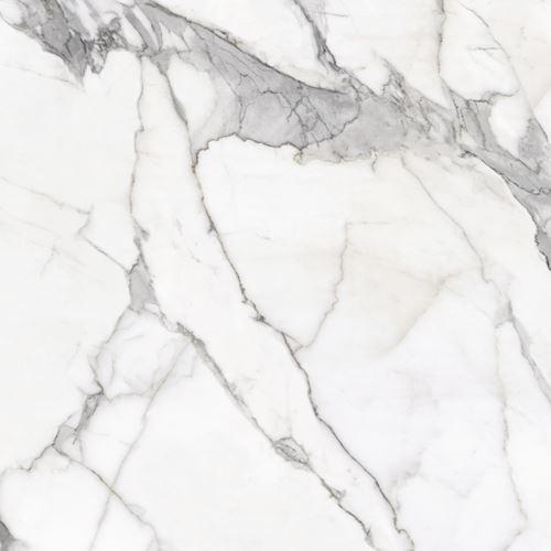 Cerrad Calacatta white Mat 120x120