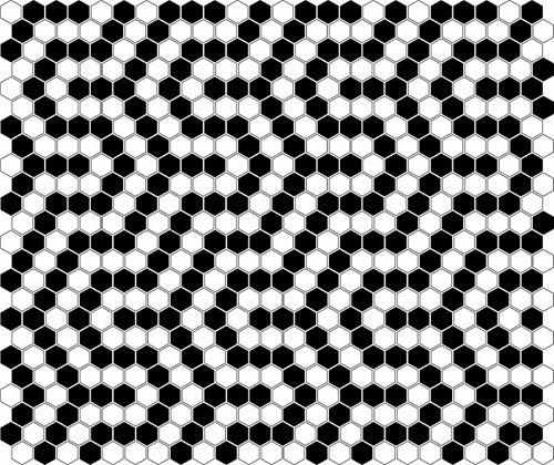Dunin Hexagonic Mini Hexagon B&W Coral