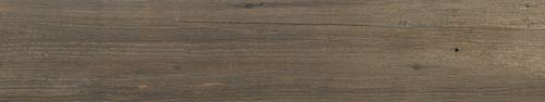 Cerrad Laroya brown 24503