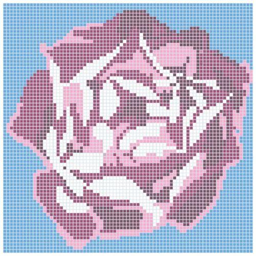 Dunin Q Design/Lines Q Rose