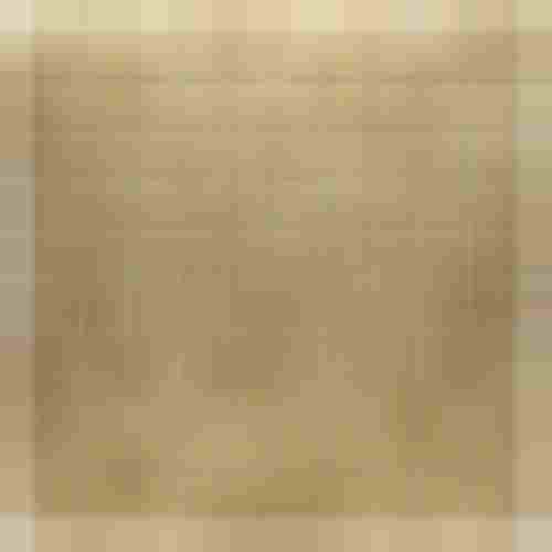 Dunin Metallic Dinox Gold 010