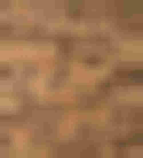 Azario Mozaika drewniana Oak Tecta