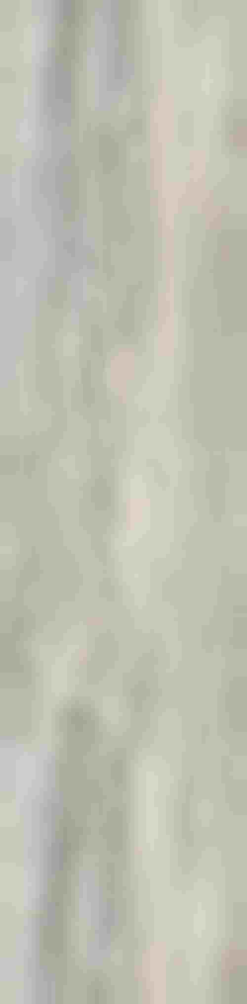 Paradyż Wetwood Grey Płyta Tarasowa 2.0