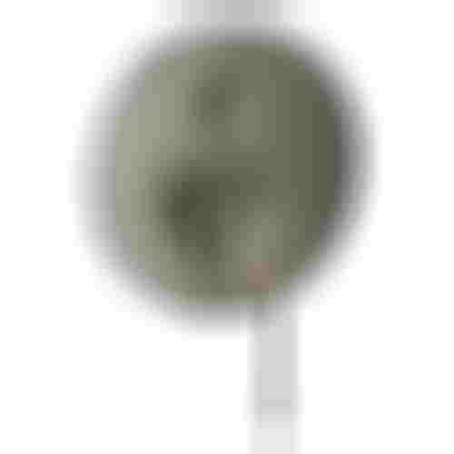 Grohe Essence 24092AL1