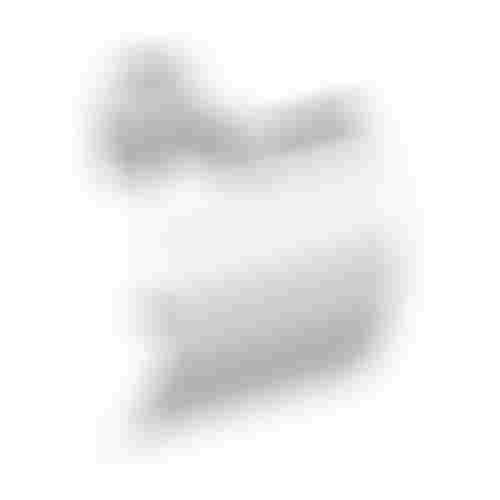 Koło Lehnen Funktion L1100200