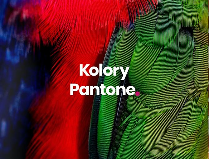 temat-kolory-pantone-min.jpg
