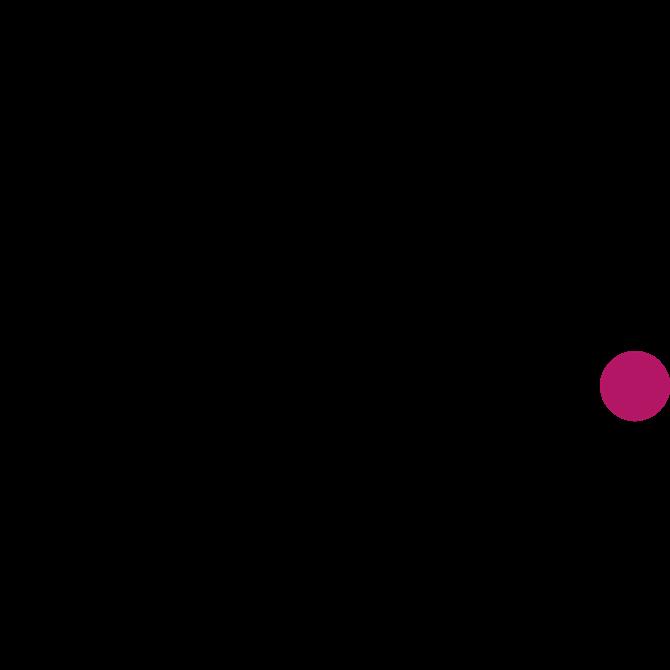 domni-logo.png