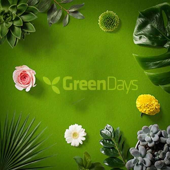 greendays-kafelek.jpg