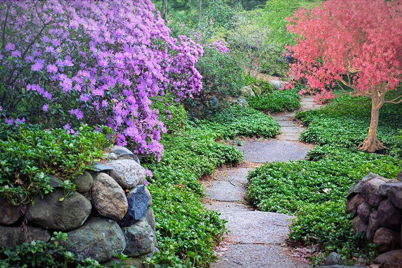 Rustykalna ścieżka w ogrodzie