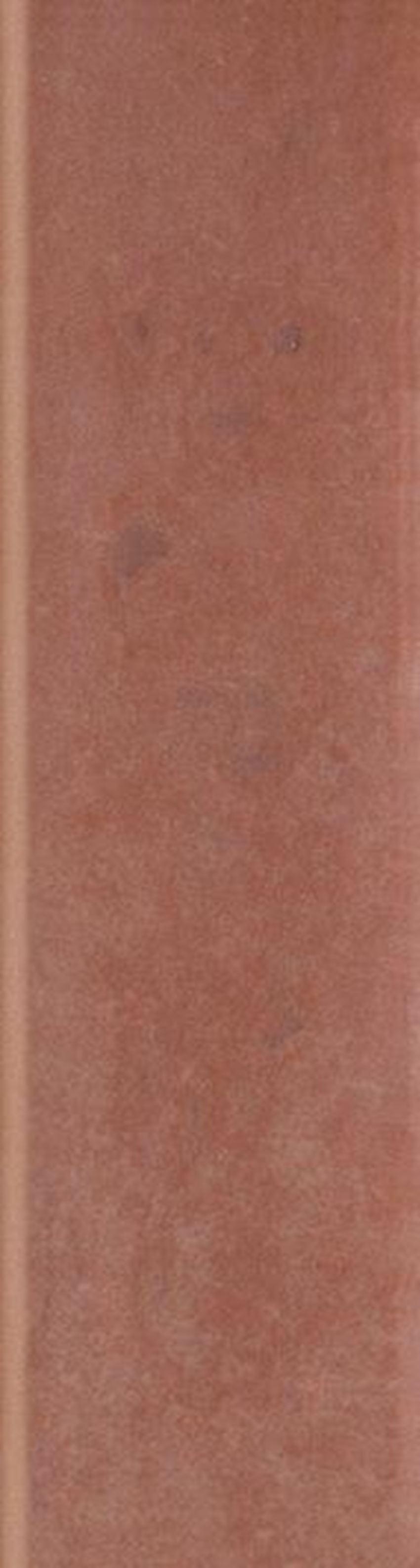 Płytka elewacyjna 8,1x30 cm Paradyż Cotto Naturale Cokół