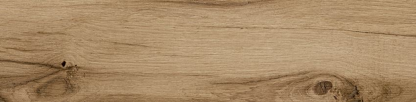Płytka ścienno-podłogowa 22,1x89 cm Opoczno Passion Oak Natural