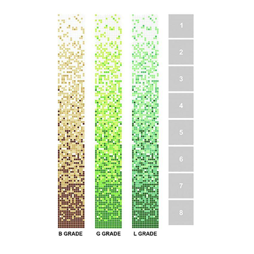 Mozaika 32,7x263 cm Dunin Q Series Grade / Beige, Green, Lagoon