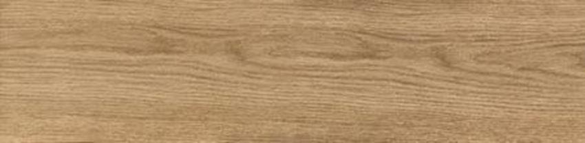 Płytka podłogowa Domino Oak Beige