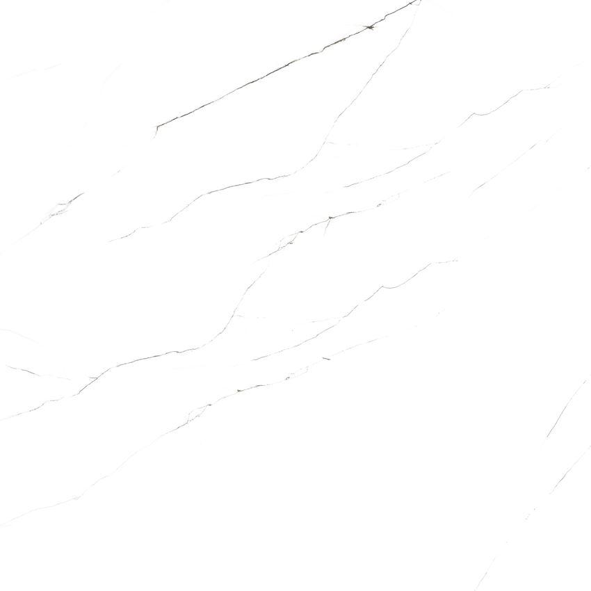 carrara classic lappato (2).jpg