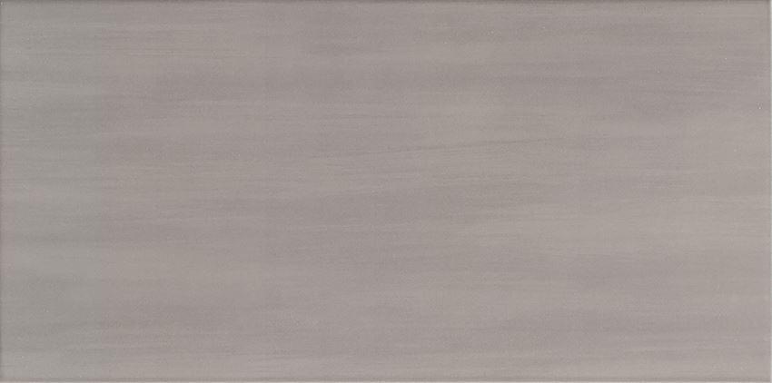 Płytka ścienna 44,8x22,3 cm Domino Tango grey