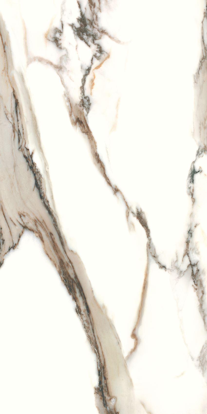 Płytka ścienno-podłogowa Cerrad Calacatta gold 60x120