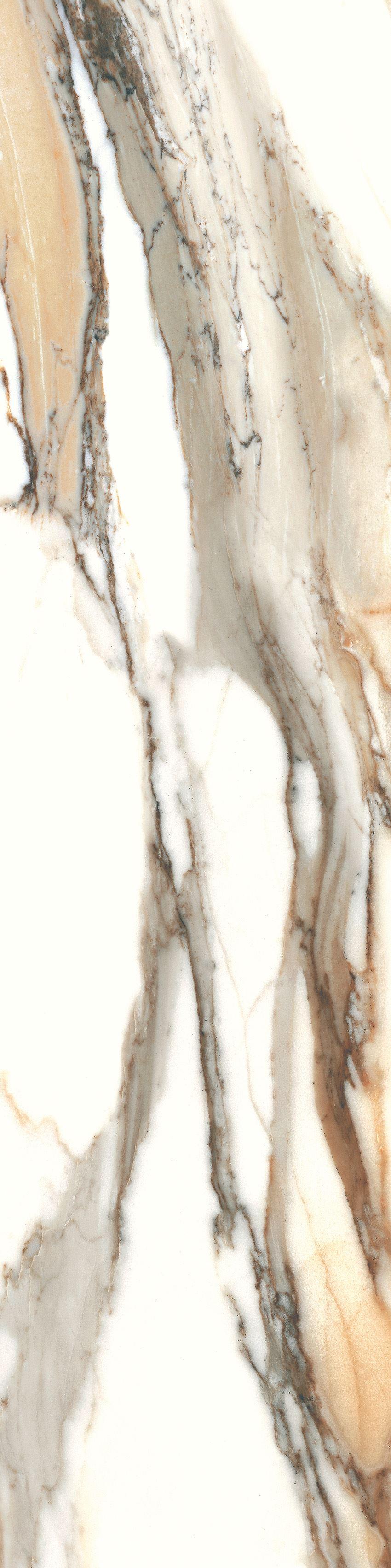 Płytka ścienno-podłogowa Cerrad Calacatta gold 30x120