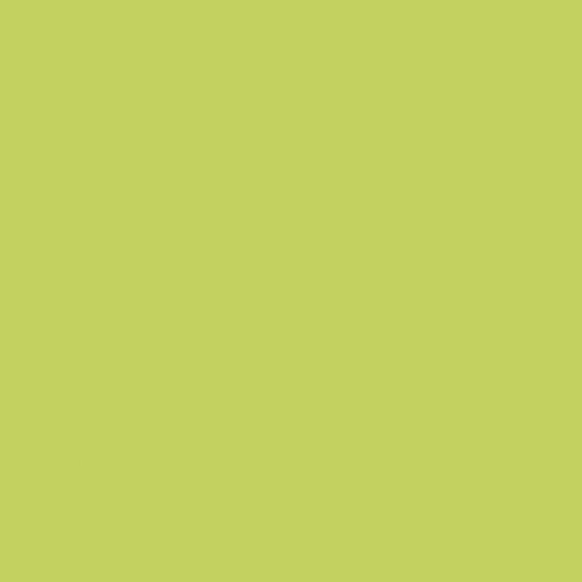 Płytka ścienna 19,8x19,8 cm Paradyż Gamma Seledynowa Ściana Mat
