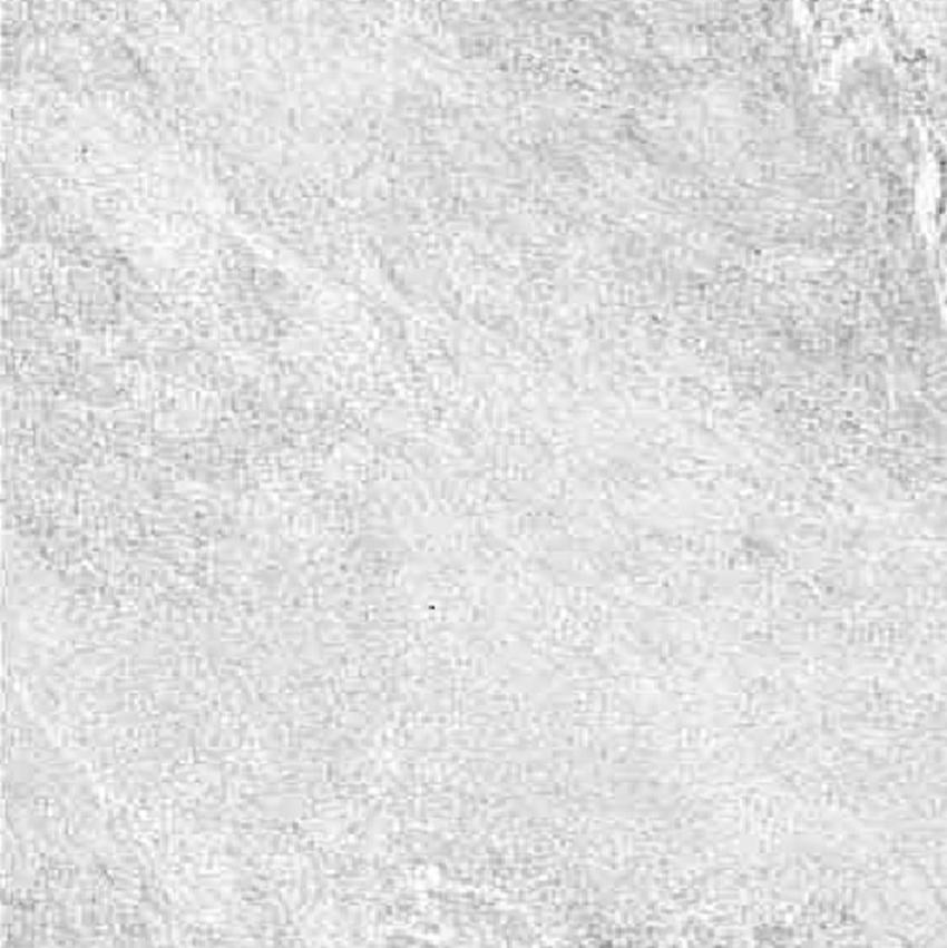 płytka podłogowa Azario Royal Granit Lappato XL 4