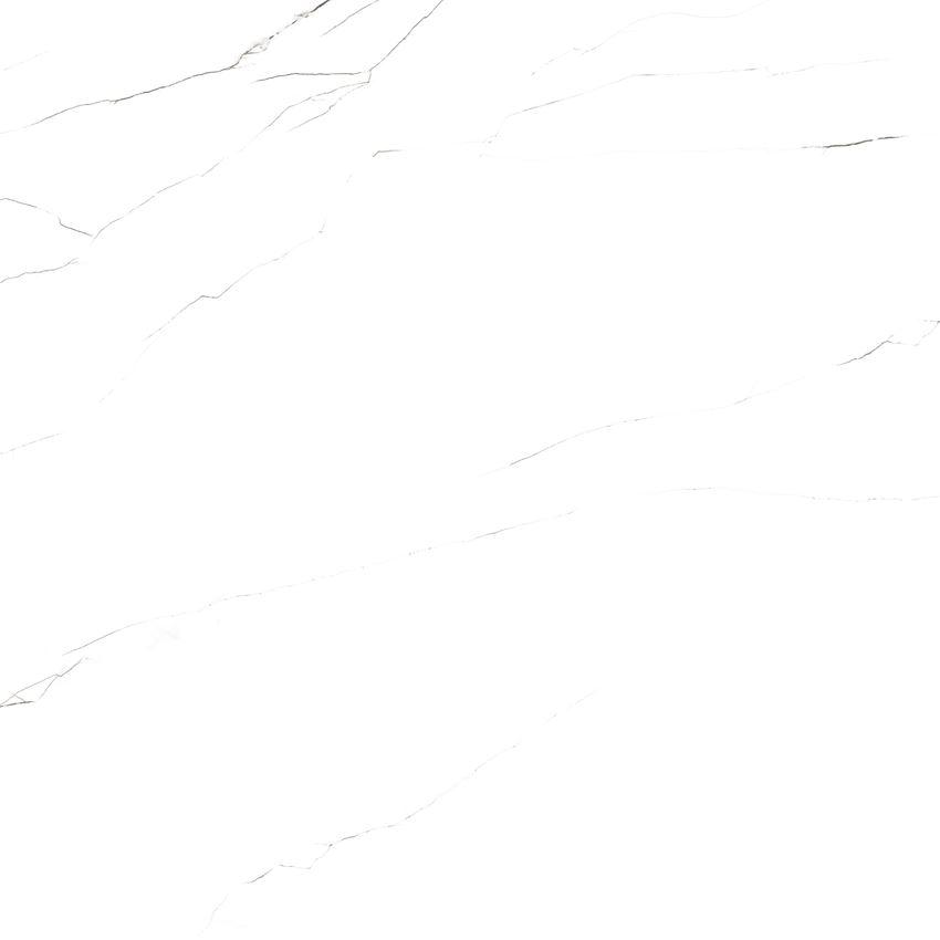 carrara classica (7).jpg