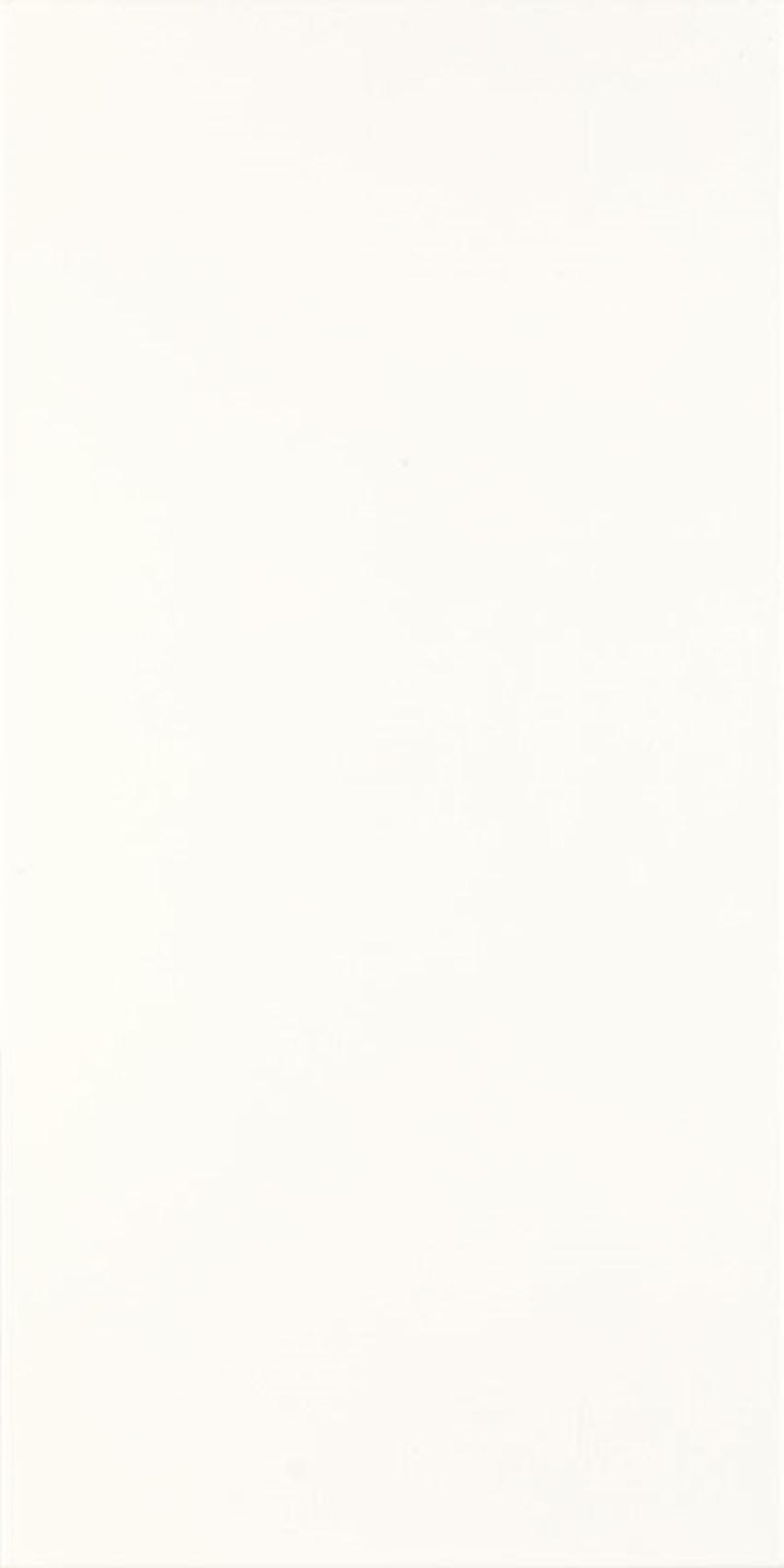 Płytka ścienna Paradyż Porcelano Bianco Ściana