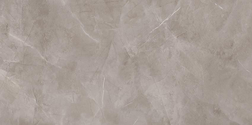 Płytka ścienno-podłogowa 119,8x239,8 cm Tubądzin Harmonic grey POL