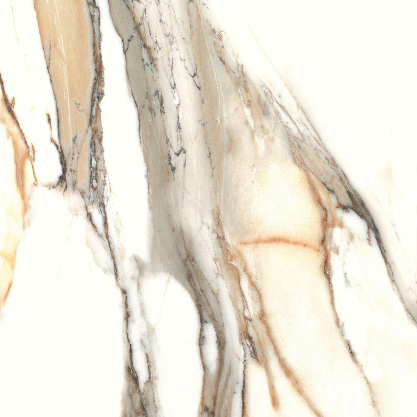 Płytka ścienno-podłogowa Cerrad Calacatta gold 60x60