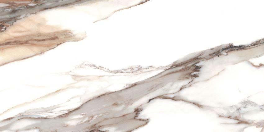 Płytka ścienno-podłogowa 60x120 cm Cerrad Calacatta gold Poler