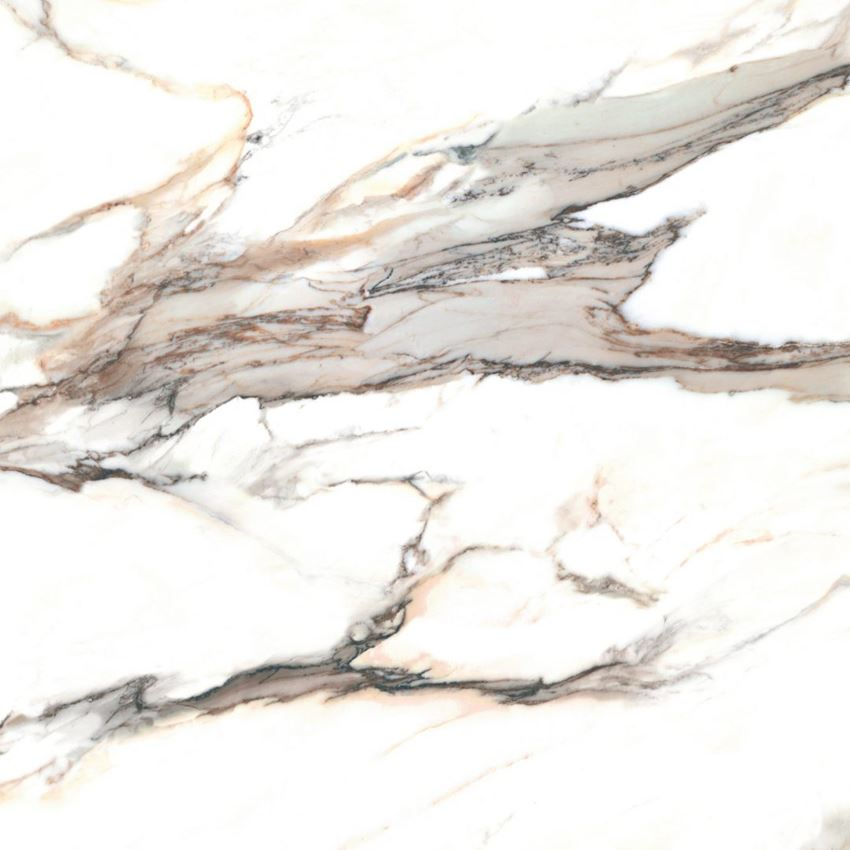 Płytka ścienno-podłogowa 120x120 cm Cerrad Calacatta gold Mat