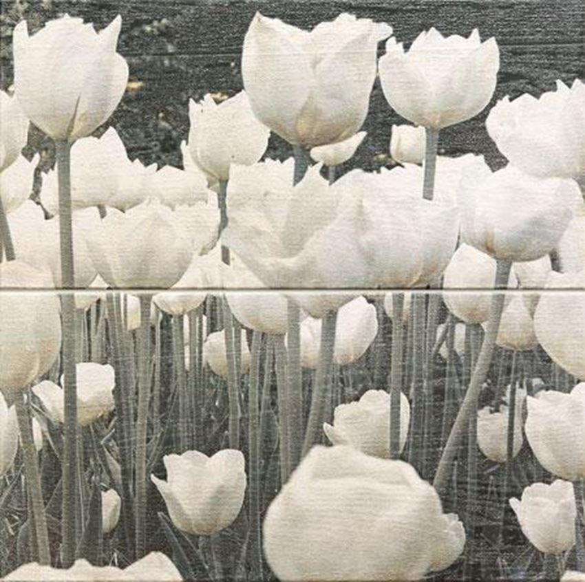 Dekor ścienny Domino Sabaudia Flower