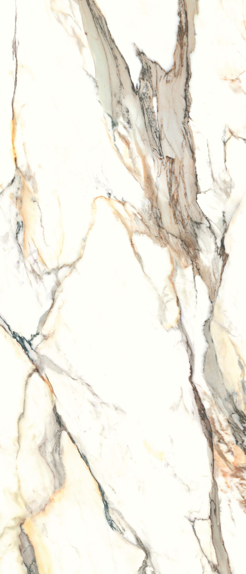 Płytka ścienno-podłogowa Cerrad Calacatta gold 120x280