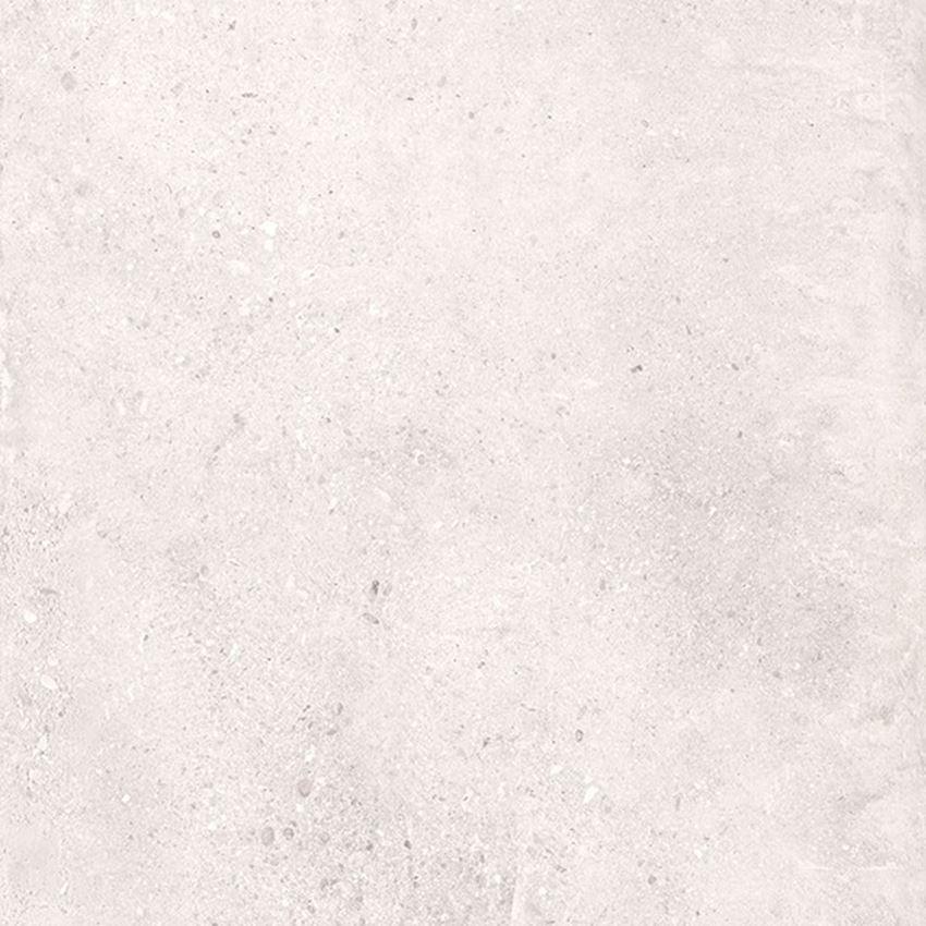 Płytka ścienno-podłogowa natura 59,7x59,7 cm Nowa Gala Geotec