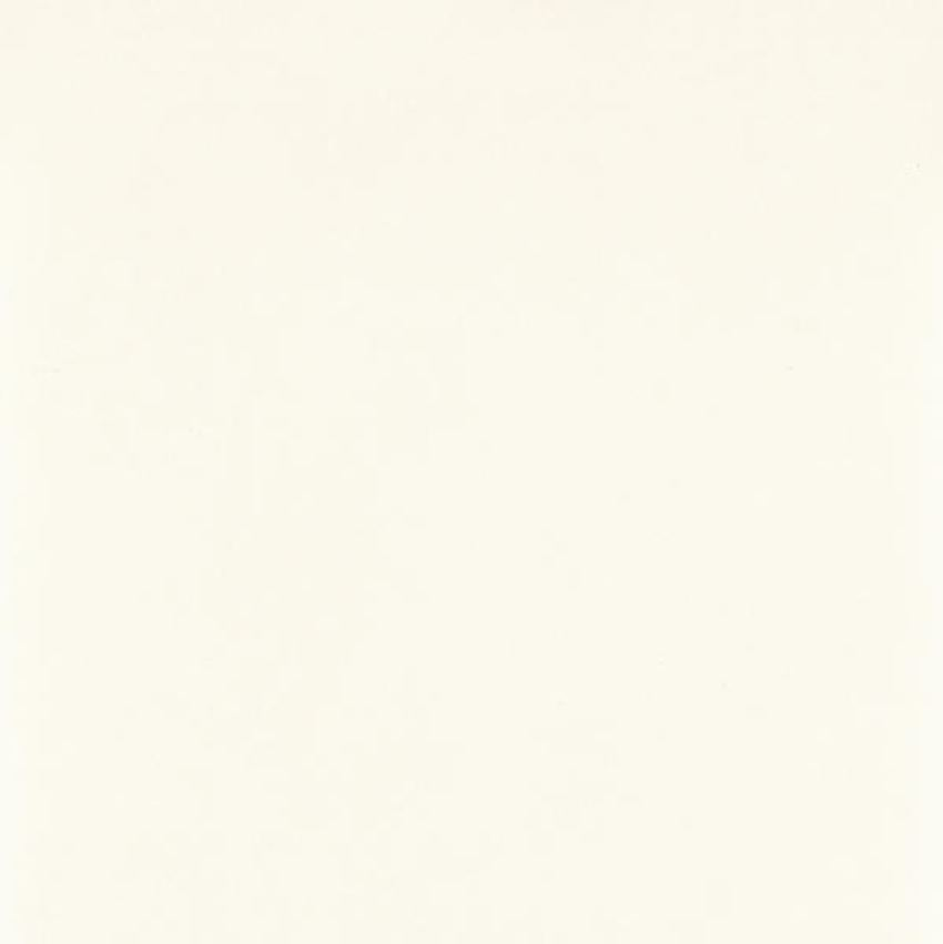 Płytka ścienno-podłogowa, 59,8x59,8cm Paradyż Tero Bianco Gres Rekt. Półpoler